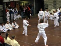 2006_WCC11